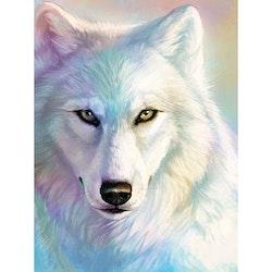 Diamanttavla Snow Wolf 40x50
