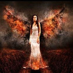 Diamanttavla Fire Wings 40x60