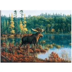 Diamanttavla Lake Moose 50x60