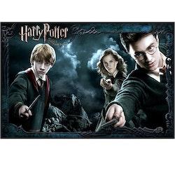 Diamanttavla Potter And Friends 50x70