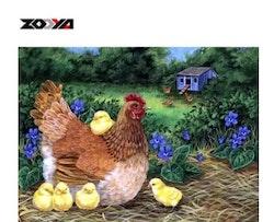 Diamanttavla (R) Höna Med Kycklingar 40x50