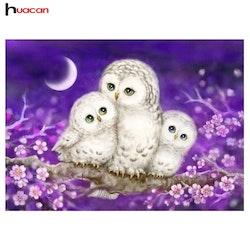 Diamanttavla (R) Lowely Owls 40x50
