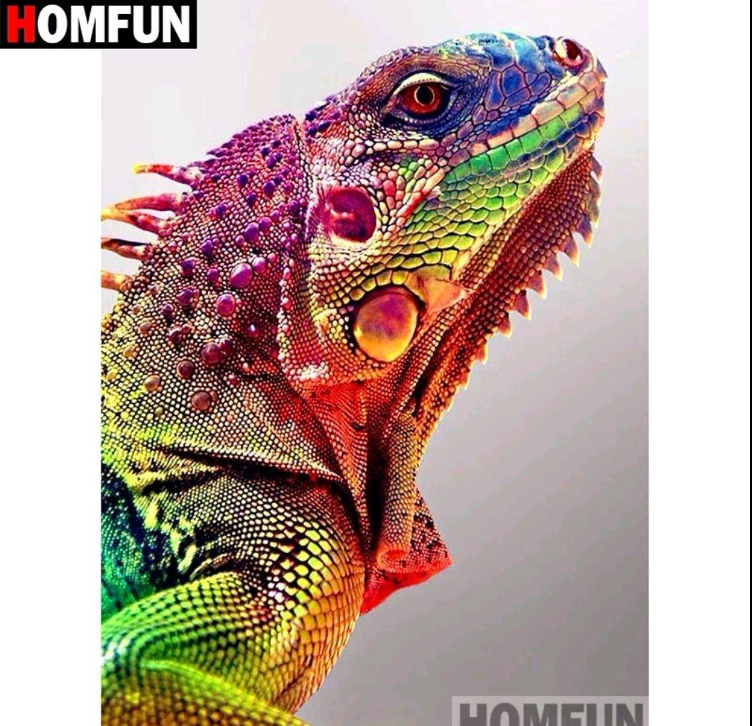 Diamanttavla Color Chameleon 30x40