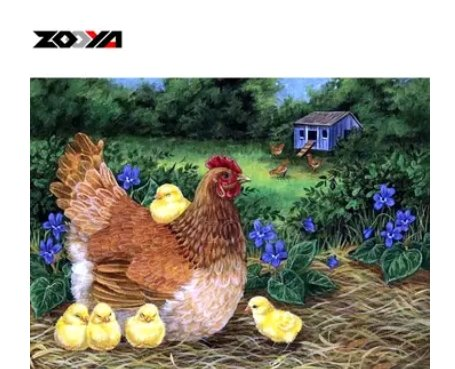 Diamanttavla Höna Med Kycklingar 40x50