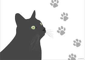 Bordstablett Svarta Katten 12 st