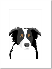 Poster Border Collie 2 st