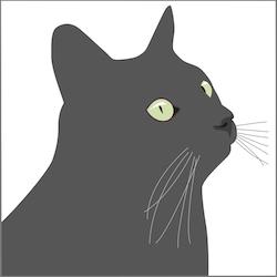 Kort Svarta Katten, Europé 10 st
