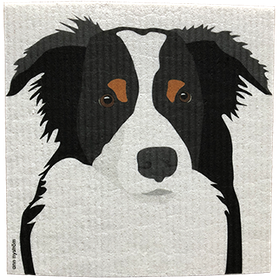 Disktrasa Border Collie