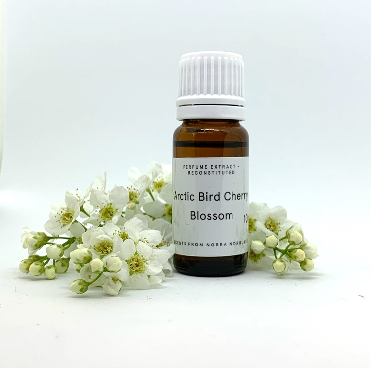 Arctic Bird Cherry Blossom 10 ml