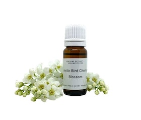 Arctic Bird Cherry Blossom - Perfume extract. Essence scent. (not an Edp!)
