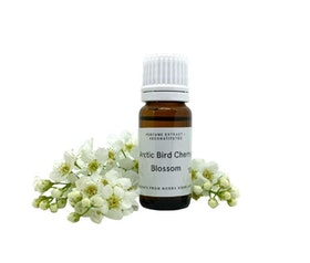 Arctic Bird Cherry Blossom - Perfume extract. 10 ml bottle. Essence scent. (not an Edp!)