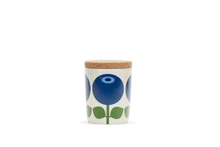 Floryd Burk 0,2 L med korklock, blåbär