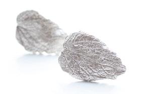 Silverlöv, örstickare