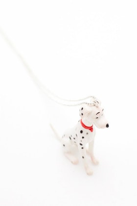 Dalmatinerhund på kedja
