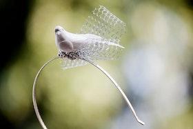 Diadem med fågel