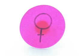 Rosa ring, feminist