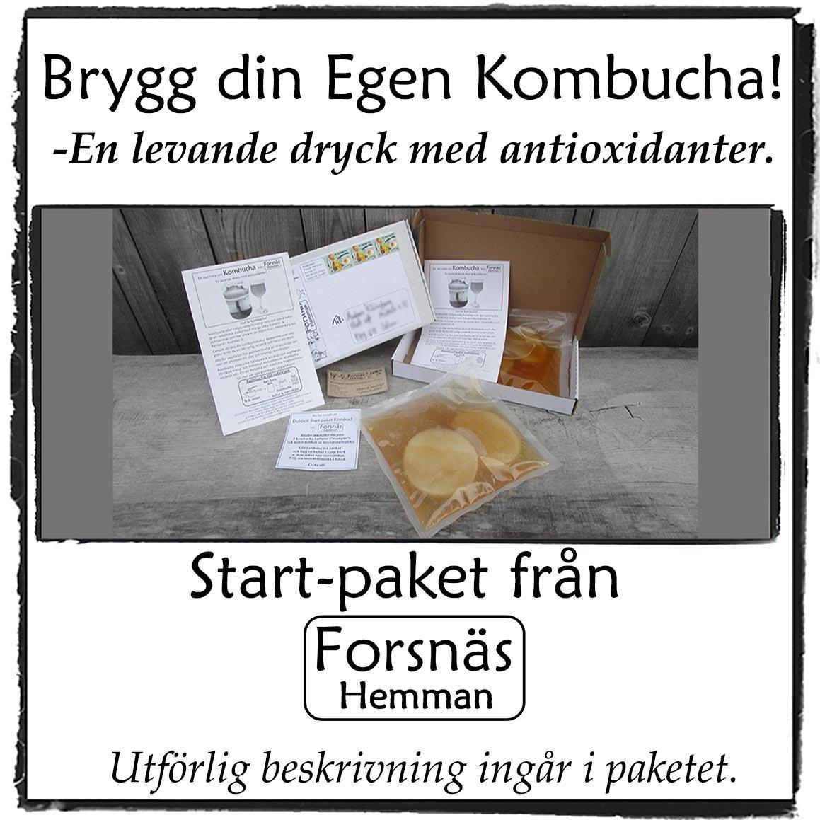 Extrastort dubbelt Kombucha Start-pack. Gör din egen kombucha!
