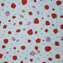 Tyg Ljusblått med jordgubbar Bältesmuddar