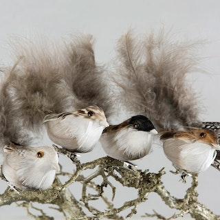 Fågel/Clip Naturmix 13cm. 5/set