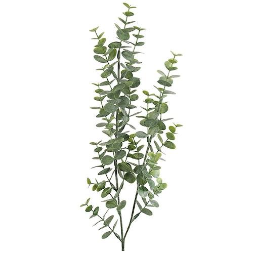 Eucalyptus småbladig