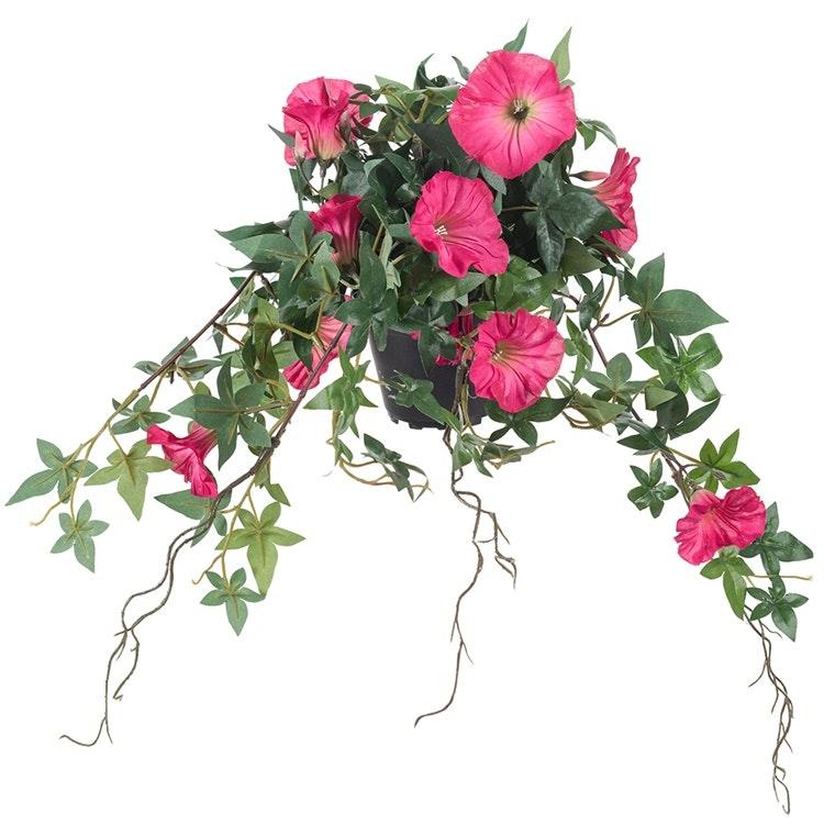 Rosa, verklighetstrogen blomman för dagen.