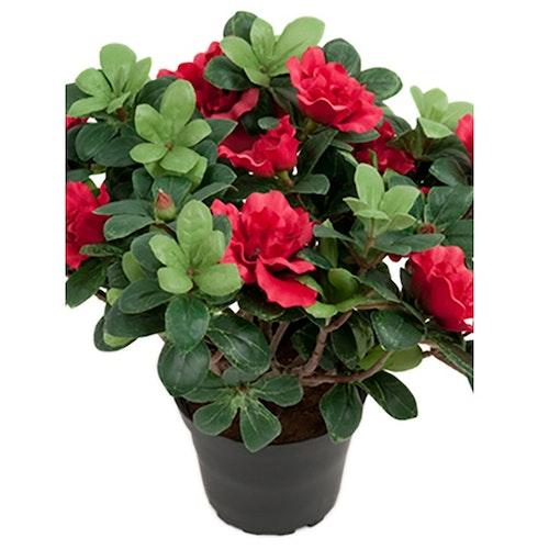 Konstgjord Azalea Rosaröd
