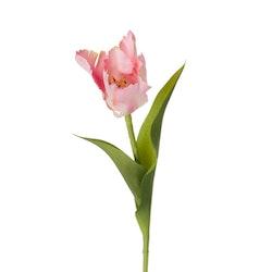 Konstgjord, fransig Tulpan, Rosa