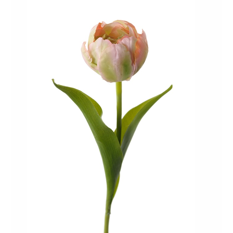 Konstgjord Tulpan, Rosa