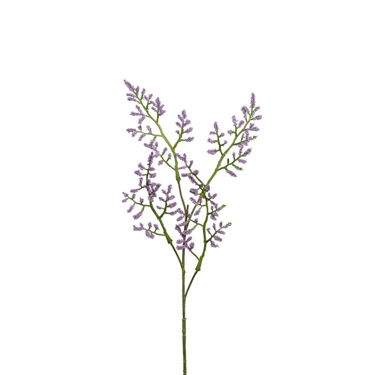 En verklighetstrogen kvist med Lila Limonium