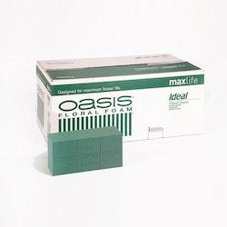 Oasis block Ideal MaxLife
