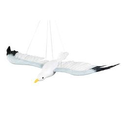 Fiskmås Flygande Stor