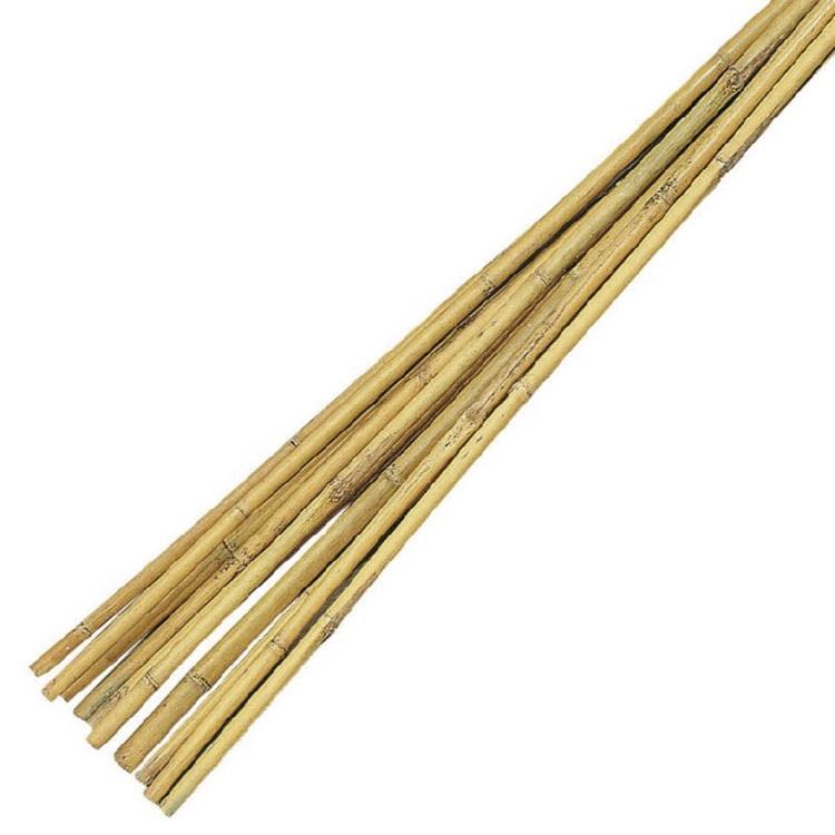 Bambupinnar 75cm, 10-pack