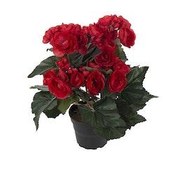 Konstgjord Begonia Röd