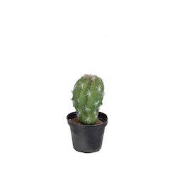Konstgjord Kaktus 15cm