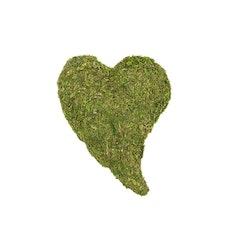 Mosshjärta litet