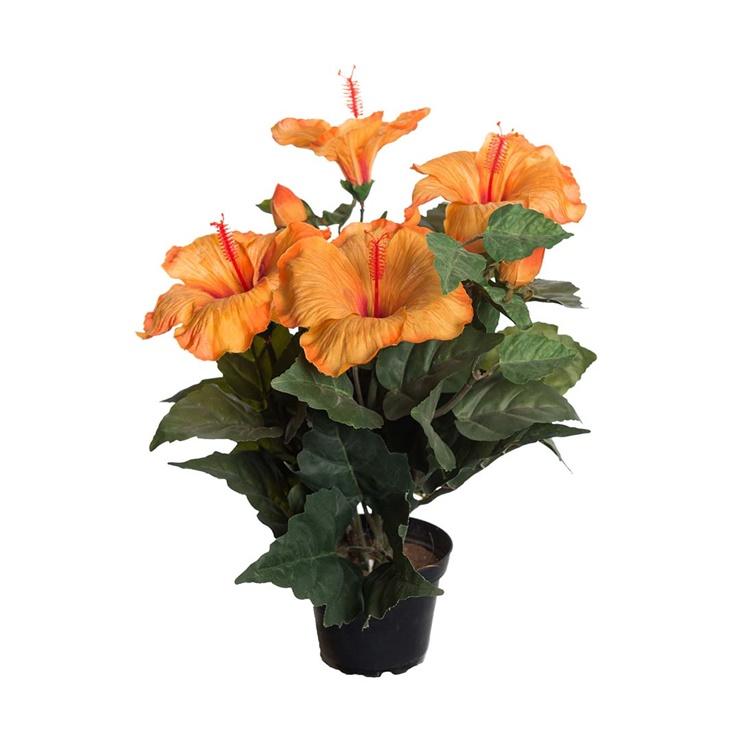 Hibiscus 36 cm Orange