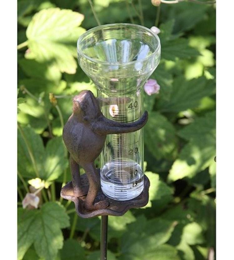 En groda på en pinne som håller i mätglaset.