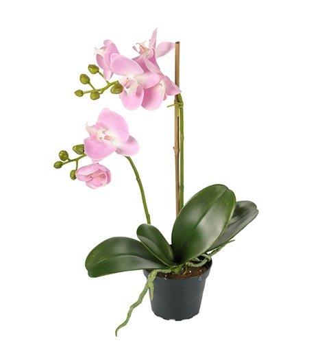 Konstgjord Phalaenopsis Rosa