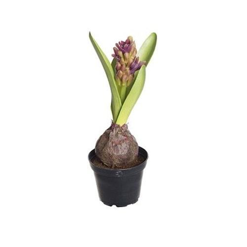 Konstgjord Hyacint Lila