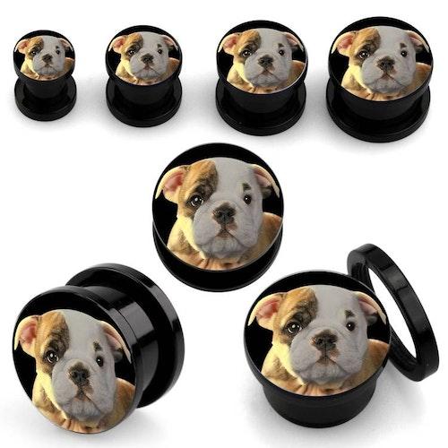 Screw-Fit Plugg bulldog