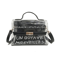 Alexis Transparent bag black