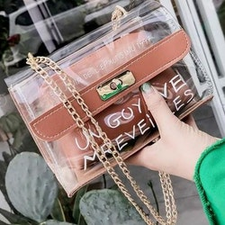 Cathy transparent purse brown