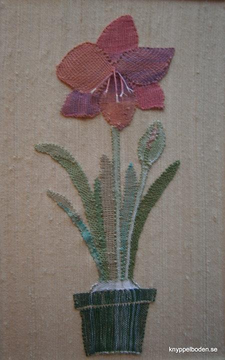 Amaryllis  11x26 cm