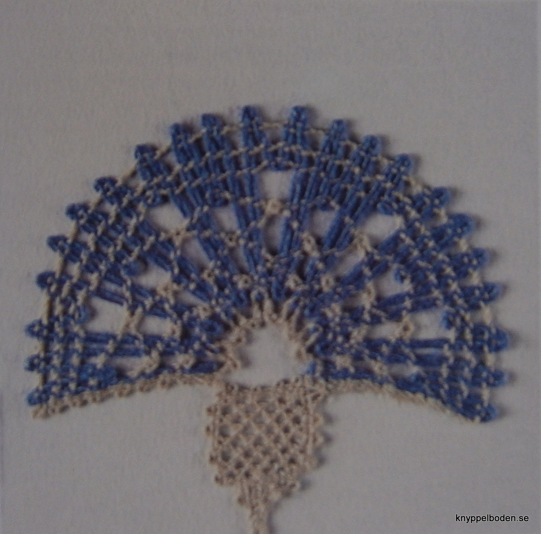 Blåklintsblomma 4,5x4,5 cm