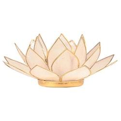 Ljushållare, Lotusblomma