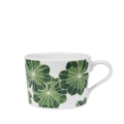 2:a-sortering kopp Daggkåpa grön 24 cl