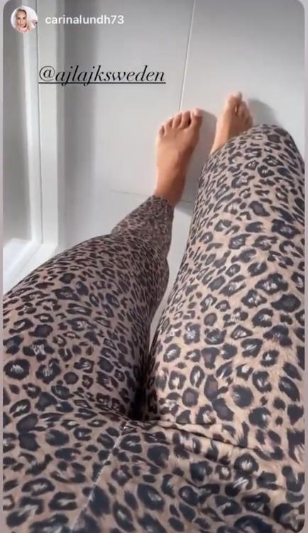 Leggings Leo