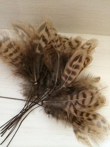 Fina påskfjädrar med tunn ståltråd
