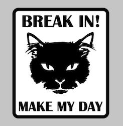 BREAK IN! MAKE MY DAY katt