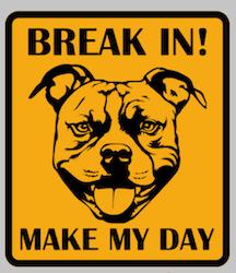 BREAK IN! MAKE MY DAY (flera olika motiv)